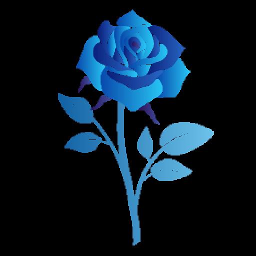 Blue Rose Group, Inc
